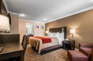 Quality Inn Downey - King Bed Room in Downey