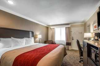 Quality Inn Downey - Large Plush Bedding in King Room